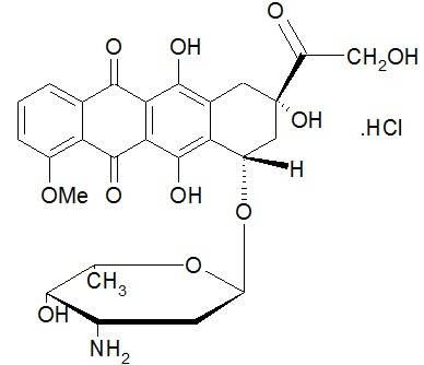 Доксорубицин гидрохлорид-Doxorubicin hydrochloride Антибиотики