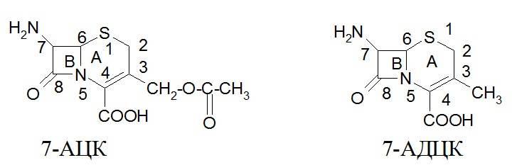 7-аминоце-фалоспорановая кислота (7-АЦК) и 7-аминодезацетоксицефало-спорановая кислота (7-АДЦЕ)