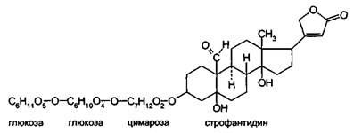 К-строфантозид