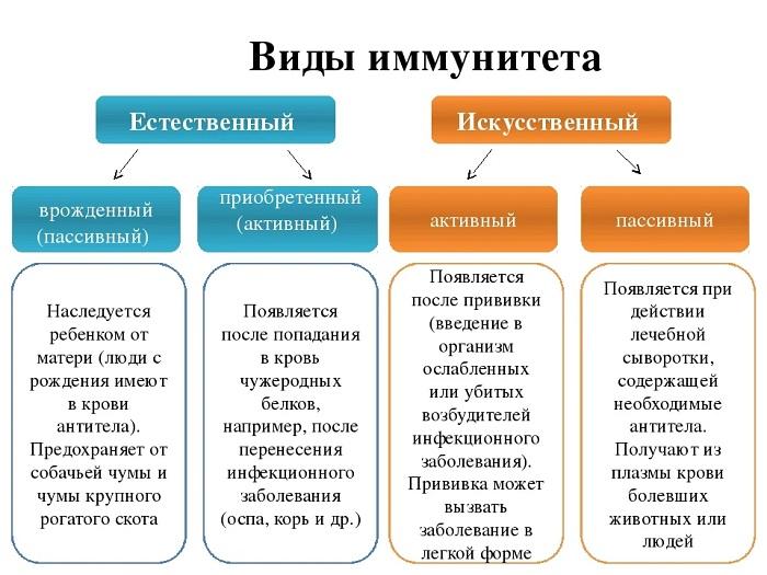 Иммунитет. виды иммунитета