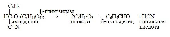 ферментирование амигдалина, образование синильной кислоты