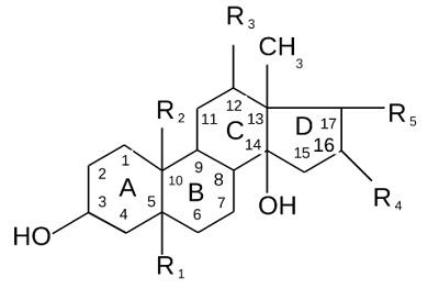 Гликозиды общая формула гликозидов