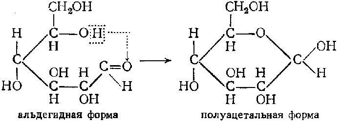 альдегидная форма, полуацетальная форма