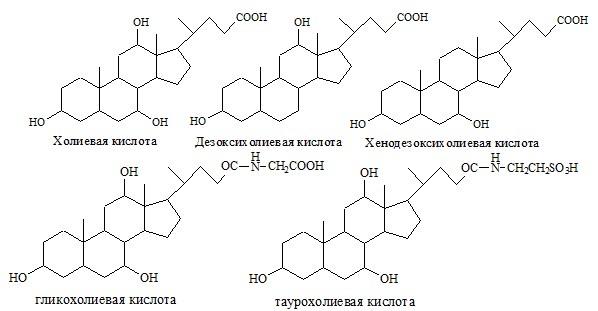 Жёлчные кислоты