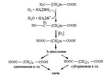 Окисление жирных кислот