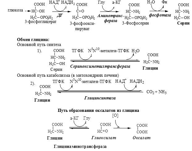 Синтез серина и глицина