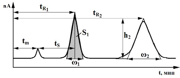 Типичная хроматограмма