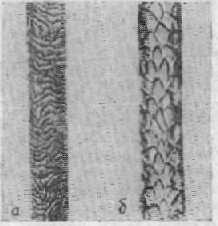Кутикула волос
