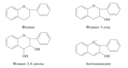 флаван, антоцианидин