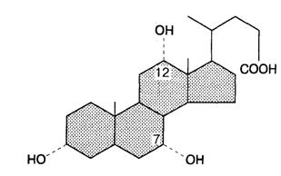 Структура желчной кислоты.
