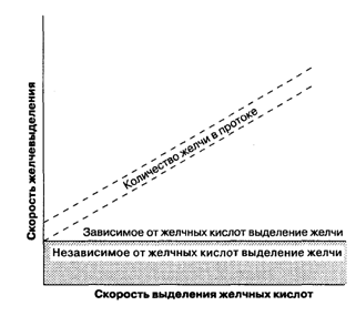 Схематичное представление компонентов выделения желчи. Желчеобразование, связанное с секрецией желчных кислот, желчеобразование, независимое от секреции желчных кислот.