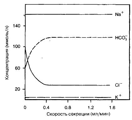 Отношение содержания электролитов в секрете поджелудочной железы к скорости секреции.