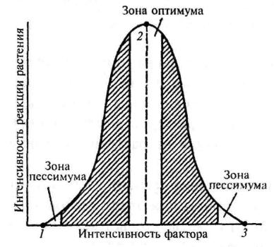 Схема действия экологического фактора на растение: 1 – точка минимума; 2 – точка оптимума; 3 – точка максимума.