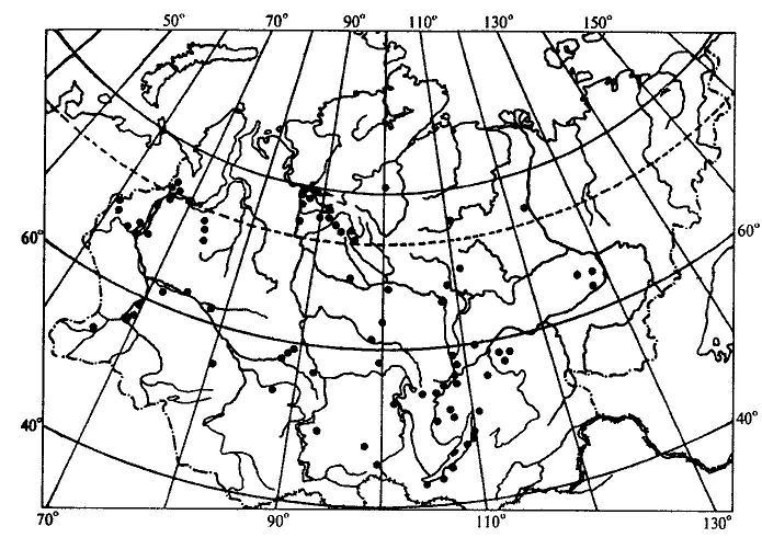 Пример точечной карты ареала (ареал зубровки арктической (Hierochloe arctica)).