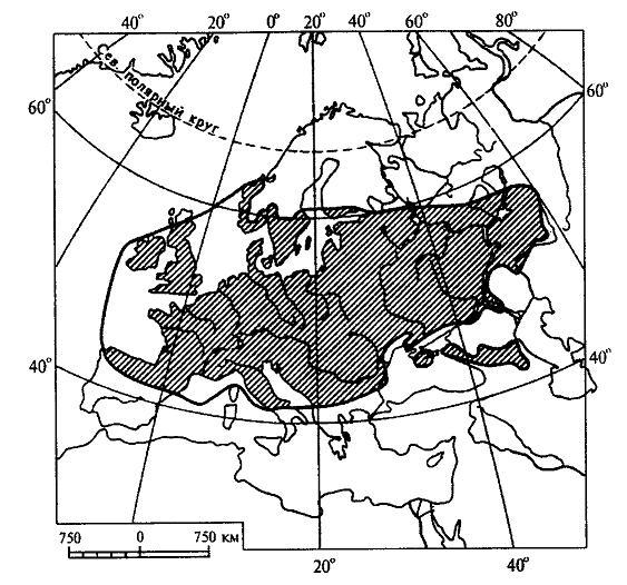 Пример контурно-штриховой карты ареала (ареал дуба обыкновенного (Quercus robur)).