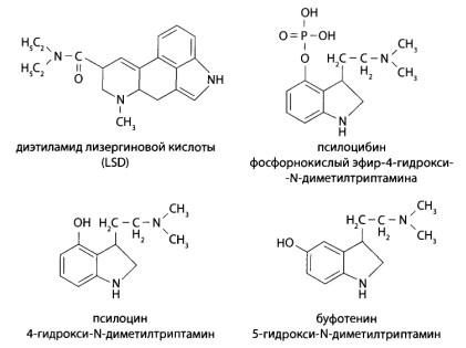 К галлюциногенам относят диэтиламид лизергиновой кислоты