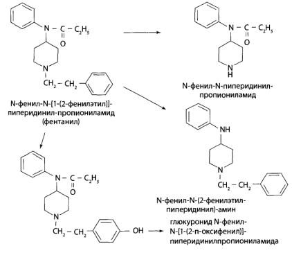 Частично может происходить гидроксилирование фенильного, пиперидинового или пропионильного радикалов