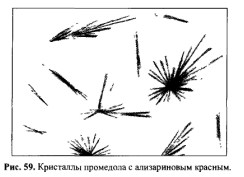 Микрокристаллоскопическая реакция на промедол