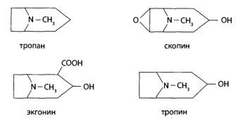 Природные алкалоиды подразделяют на производные спиртов тропина