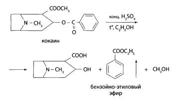 Реакция образования бензойно-этилового эфира
