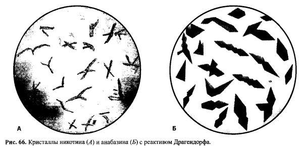 Кристаллы с реактивом Драгендорфа образуют другие азотсодержащие вещества
