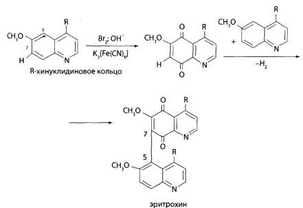 При действии бромной воды хинин окисляется до 5,8-хинолинхинона