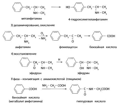 Препараты группы фенилалкиламинов быстро всасываются из ЖКТ